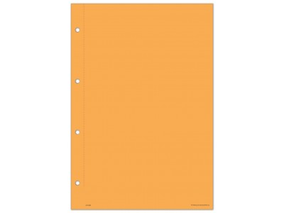 Working Paper Covers - Orange (large)